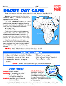 Daddy Day Care Lesson Plan