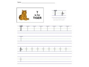 T Is For Tiger Worksheet