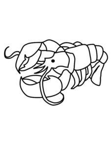 Scorpion Picture Worksheet