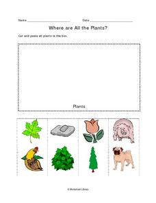 Where Are All the Plants? Where Are All the Animals? Worksheet