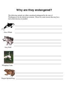 gray wolf endangered species lesson plans worksheets. Black Bedroom Furniture Sets. Home Design Ideas