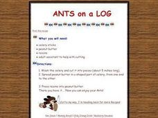Ants on a Log Worksheet