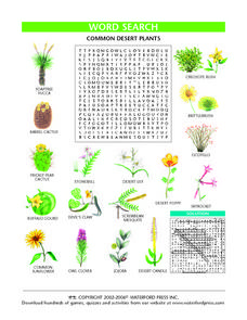 Word Search:  Common Desert Plants Lesson Plan