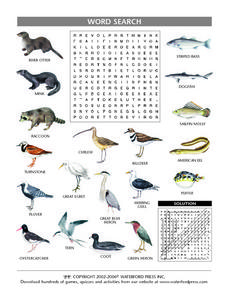 River Animal Picture and Word Search Lesson Plan