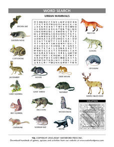 Urban Mammals- Word Search Worksheet Lesson Plan
