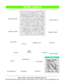 Birds, Fish, Mammals and Flowers Word Search Lesson Plan