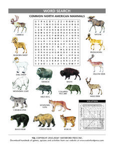 Common North American Mammals Word Search Lesson Plan