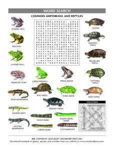 Common Amphibians and Reptiles Word Search Lesson Plan