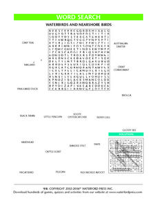 Word Search: Waterbirds and Nearshore Birds Lesson Plan