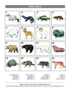 Who Am I? Mammals Identification Lesson Plan