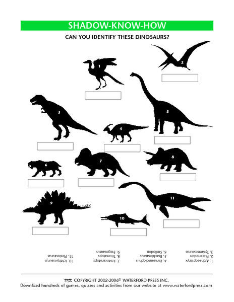 Shadow Know-How:  Can You Identify These Dinosaurs? Lesson Plan
