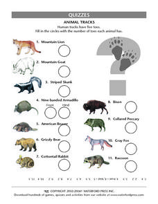Quizzes:  Animal Tracks Lesson Plan