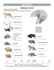 Quiz: Mammal Tracks Lesson Plan