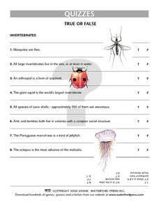Quiz: Invertebrates Lesson Plan