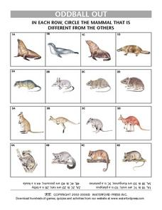 Oddball Out- Finding the Item that Does Not Belong- Mammals Lesson Plan