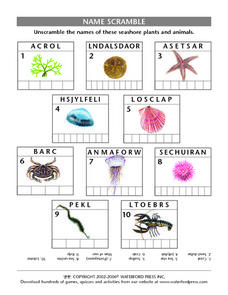 Name Scramble: Seashore Plants and Animals Lesson Plan