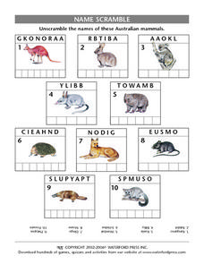 Australian Mammals Word Scramble Lesson Plan