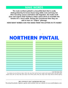 Make Words: Northern Pintail Lesson Plan