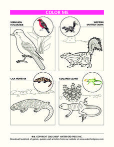 Color Me- Color Pictures of Animals Worksheet