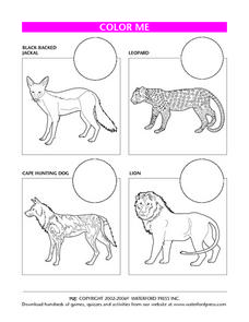 Color Me: African Animals Lesson Plan