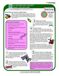 4-H Entomology Project: Insect Collections Worksheet