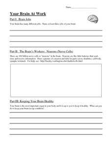 Your Brain At Work Worksheet