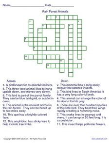 Rain Forest Animals Crossword Worksheet