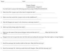 Muggie Maggie Comprehension- Chapter 6 Worksheet