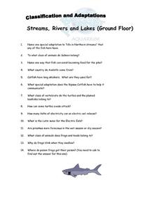Classification and Adaptations- Streams, Rivers, and Lakes - Where the Land Meets the Sea And Caribbean Reef Lesson Plan