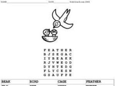 Birds in a Nest Word Search Worksheet