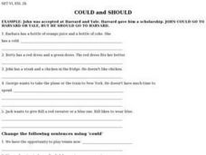 Could and Should Worksheet
