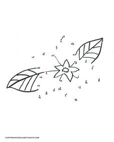 Alphabet Flower Dot to Dot Worksheet