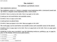 The Indefinite and Definite Article- Explanation and Practice Exercises Worksheet