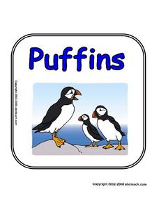 Report Booklet Cover Sheet:  Puffins (Full Color) Worksheet