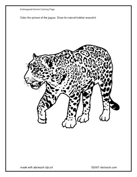 endangered animal coloring page jaguar worksheet for 3rd 4th grade lesson planet. Black Bedroom Furniture Sets. Home Design Ideas