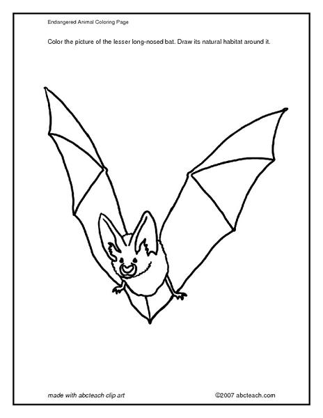 Art Bats Lesson Plans & Worksheets Reviewed by Teachers