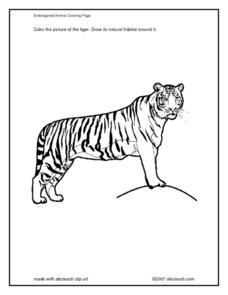 Tiger Coloring Page Worksheet