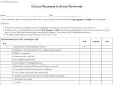 Cultural Processes in Action Worksheet Worksheet