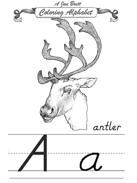 Antlers Lesson Plans & Worksheets Reviewed by Teachers
