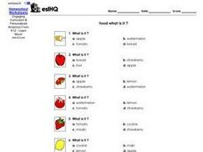 Food:  What Is It? Worksheet