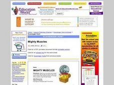 Mighty Muscles Scavenger Hunt Lesson Plan