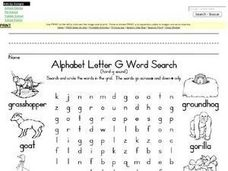 Alphabet Letter G Word Search- Hard G Worksheet