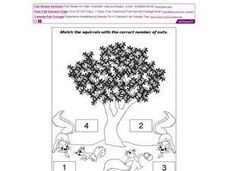 Match the Squirrels Worksheet
