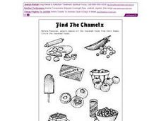 Find the Chametz Worksheet
