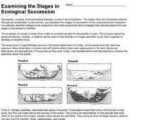 Examining the Stages in Ecological Succession Worksheet for 9th ...