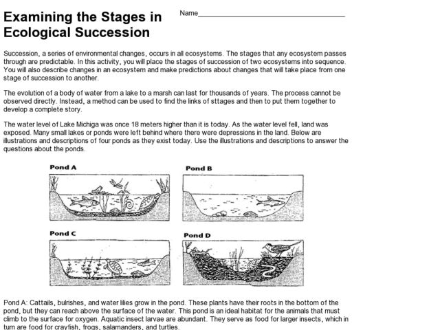 worksheets on ecological relationships - The Best and Most ...