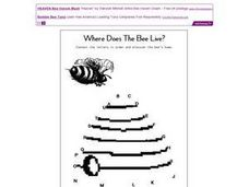 Where Does the Bee Live? Worksheet