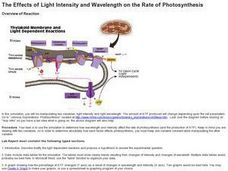 The Effects of Light Intensity and Wavelength on the Rate of Photosynthesis Lesson Plan