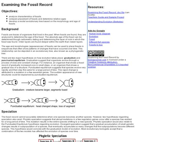 Examining the Fossil Record 9th 10th Grade Lesson Plan – Fossil Record Worksheet