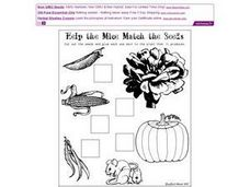 Help the Mice Match the Seeds Worksheet